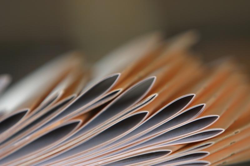 Firme - actele necesare infiintarii unei firme